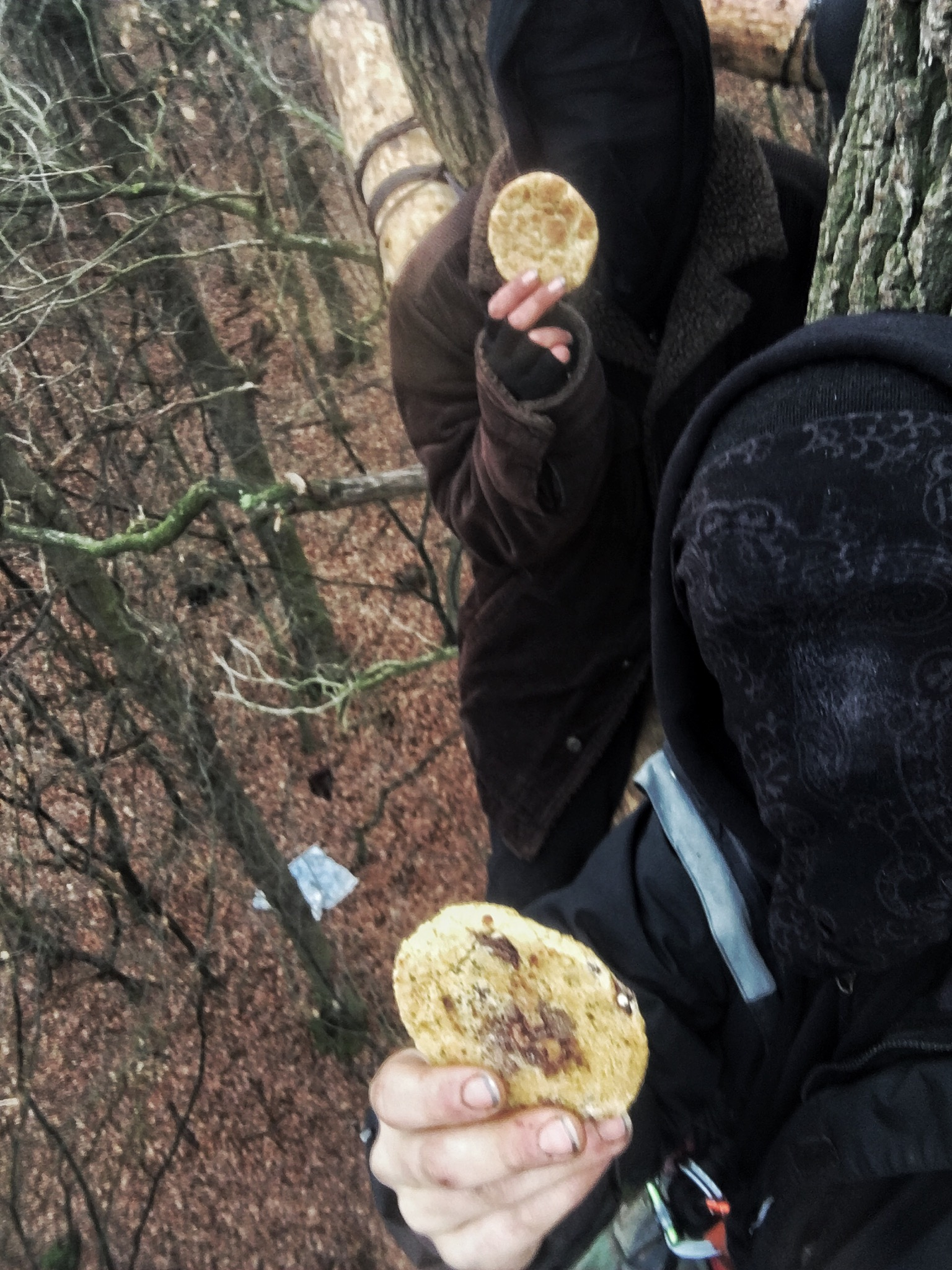 UNOFFENSIVE UPDATE – POLICE REPRESSION IN HAMBACHER FORST